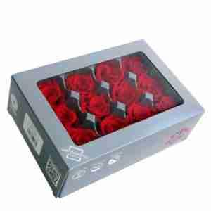 Rosa Mini Roja