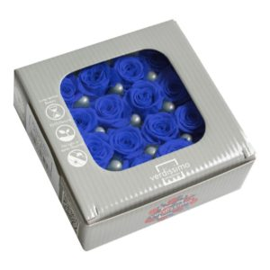 Rosa Princesa Azul Oscuro