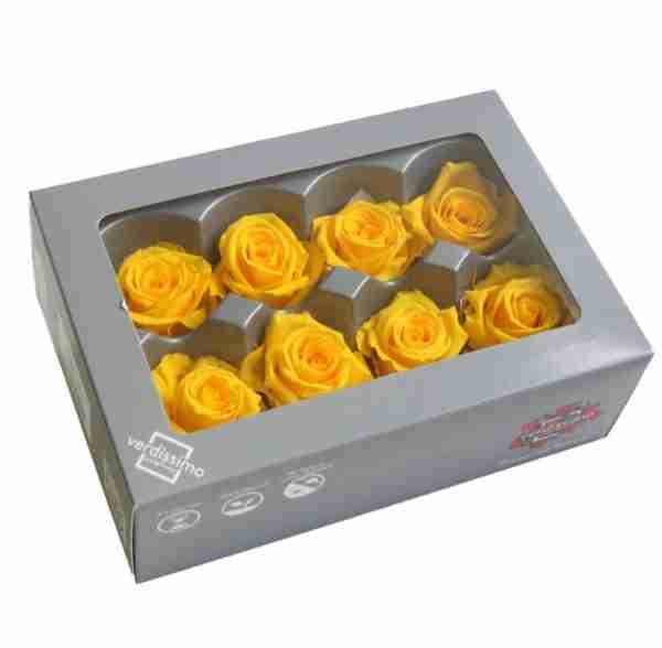 Rosa Medium Amarilla
