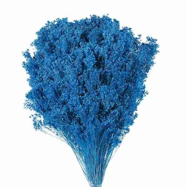 Brooms Azul Oscuro