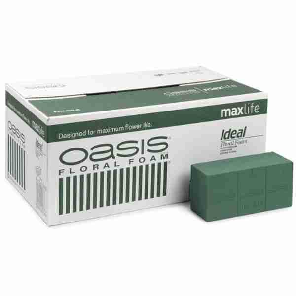 Esponja Oasis