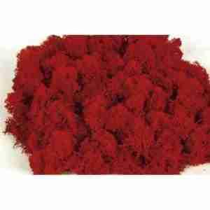 Liquen Rojo