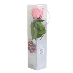 Rosa 27cm