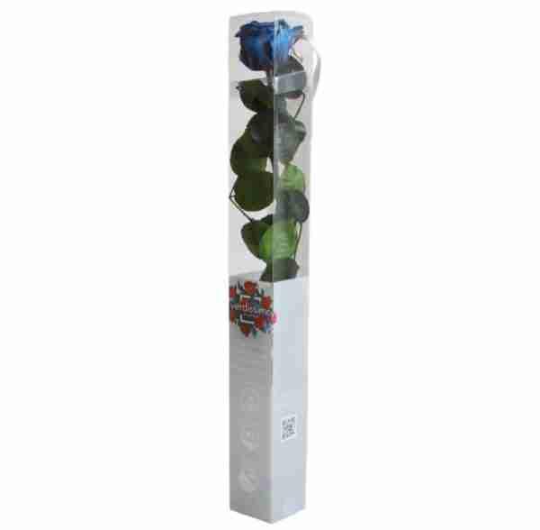 Rosa Preservada Azul Oscuro 55cm
