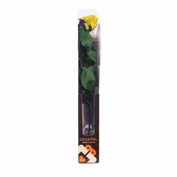 Rosa Preservada Arcoiris 55cm