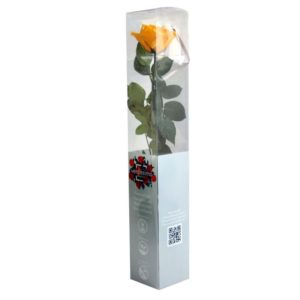 Rosa Preservada Amarilla 55cm